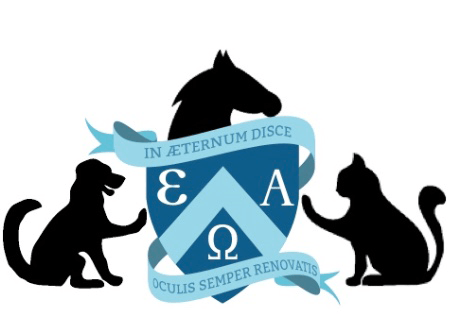 eao ecole aquitaine osteopathie formations stages osteopathe bordeaux gironde nouvelle aquitaine formation osteopathie animale logotype - Ecole Aquitaine Ostéopathie - Ostéopathie animale -  -